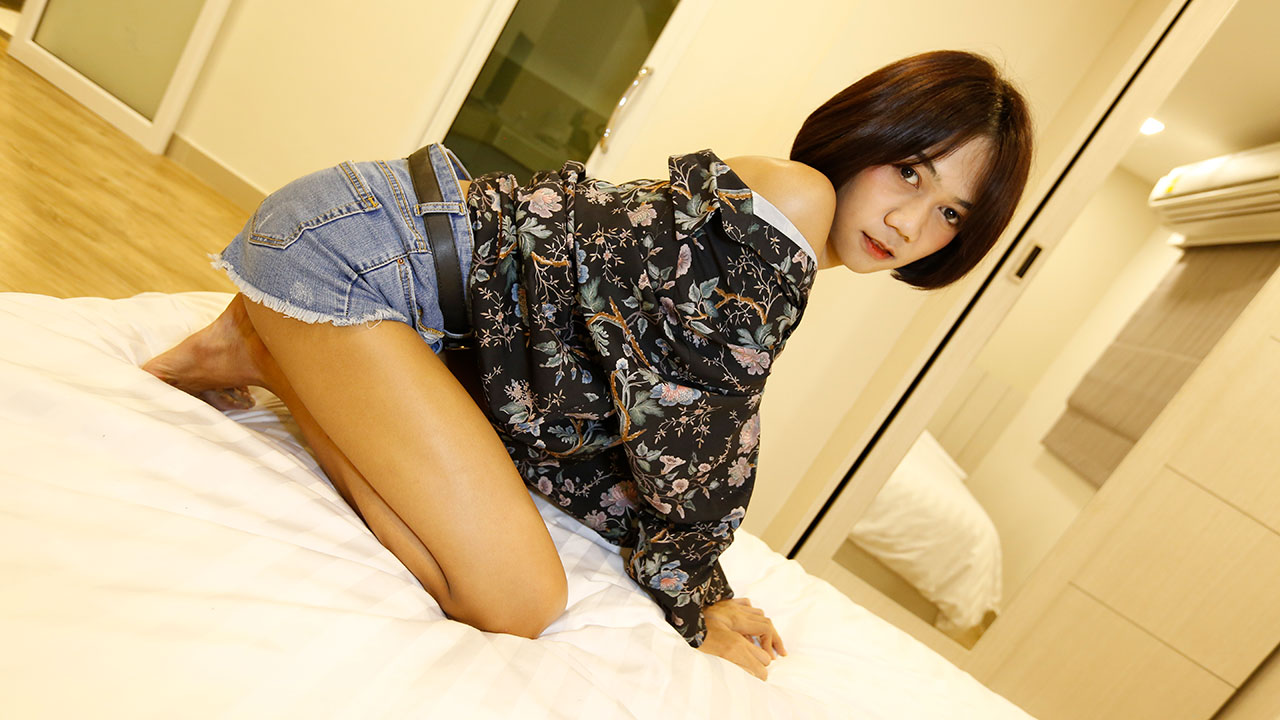 Hello LadyBoy™ OFFICIAL SITE – 100% Girly Thai Ladyboys